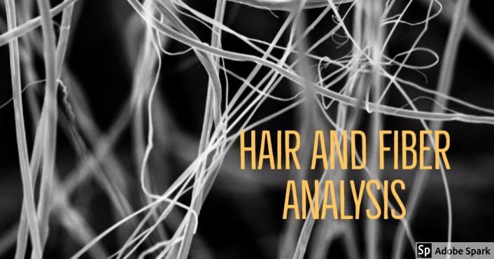 Forensic Fiber And Hair Analysis Tomahawk Talk